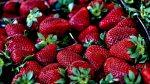 Erdbeeren Fakten Edeka Kempken