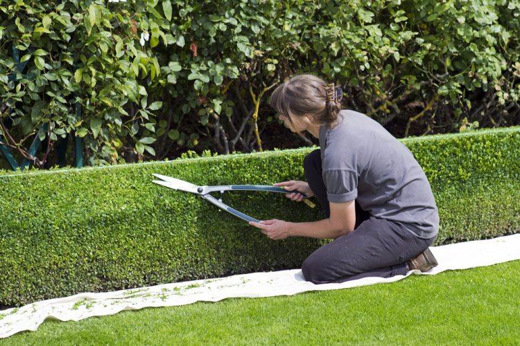 Gesundheit Edeka Kempken Gartenarbeit