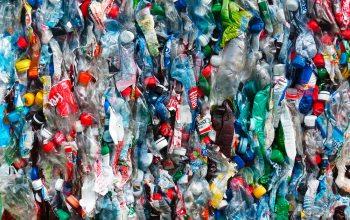 Plastik-Fasten-Challenge Edeka Kempken