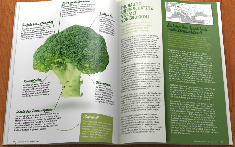 Edeka Kempken Regional Journal 29