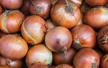 Wissenswertes über Zwiebeln (Foto: © pixabay.de)