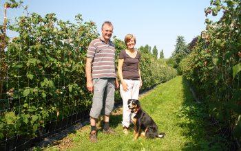 Norbert und Michaela Boekels mit ihrer Hündin Maya auf einem ihrer Himbeer-Felder. (Foto: © EDEKA Kempken)