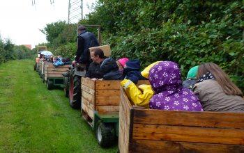Die Kinder hatten sichtlich Spaß auf dem Benrader Obsthof. (Foto: © EDEKA Kempken)