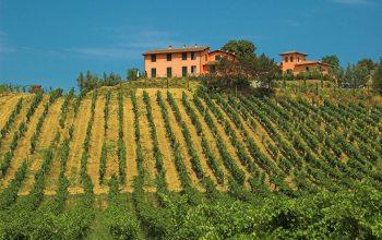 Weingut in der Toskana (Foto: Thilo Reiter / Pixelio)