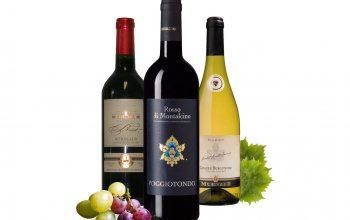 Château Briot Bordeaux Rouge mit Goldmedaille, Poggiotondo Rosso di Montalcino DOCG, Münzer Grauburgunder Spätlese (Foto Trauben: © pixabay)