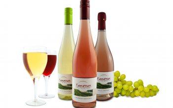Wein von Kempken (Foto Trauben:© pixabay; Foto Wein: © EDEKA Kempken)