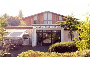 Eingang Tierheim (Foto: © EDEKA Kempken)