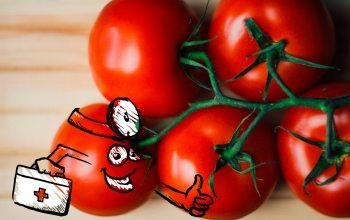 Tomaten-Doktor (Foto: © timreckmann / pixelio.de)