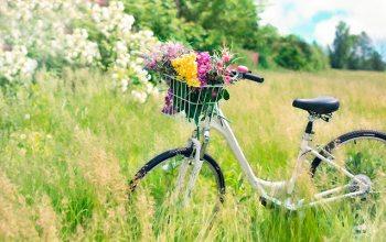 Sommerzeit (Foto: © pixabay.de)