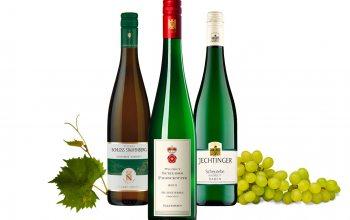 (v.l.) 2014er Markgraf von Baden, 2015er Schloss Proschwitz Qualitätswein, 2015 er Jechtinger (Foto Trauben:© pixabay)