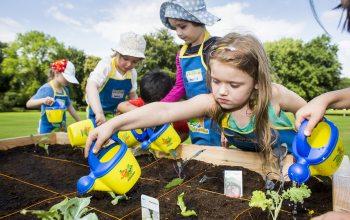 """Die Initiative """"Gemüsebeete für Kids"""" erreichte alleine im Jahr 2014 rund 120.000 Kinder. Foto: EDEKA / Jochen Zick"""