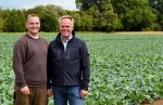 v.l.: Sohn Matthias und Inhaber Heinz Stoffers versorgen die Gemüseabteilungen von Edeka Kempken täglich mit frischem Gemüse. (Foto: Gemüsebau Stoffers)