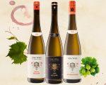 Wein Expertisen Edeka Kempken