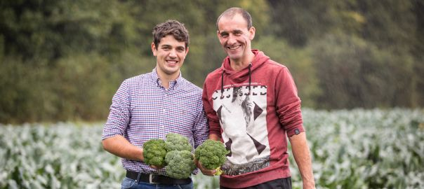 Martin Winzen und sein Sohn Fabio bei der Ernte auf einem ihrer Brokkoli-Felder.