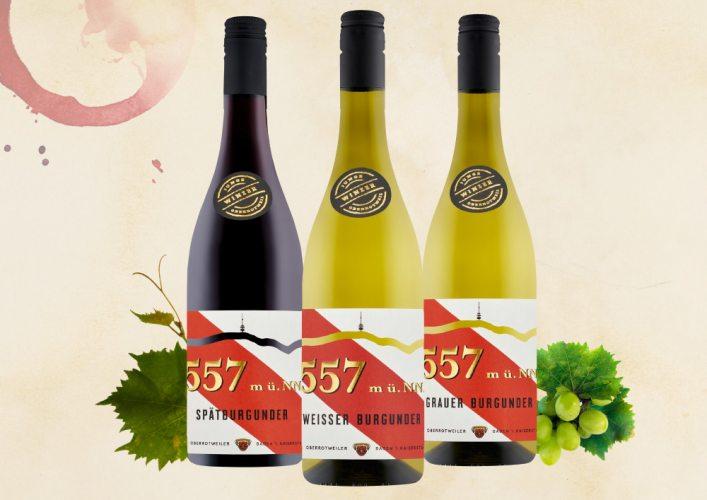 Unsere Weinempfehlungen für den Herbst