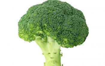 """Brokkoli wird aufgrund seiner nährhaften Inhaltsstoffe auch gerne als """"Superfood"""" bezeichnet. (Foto: Pixabay)"""