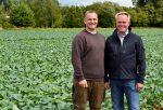 v.l.: Sohn Matthias und Inhaber Heinz Stoffers versorgen die Gemüseabteilungen von Edeka Kempken täglich mit frischem Gemüse.