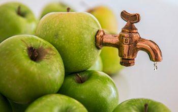 RFezept für selbstgemachten Apfelsaft