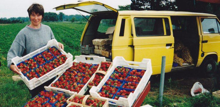 Marianne Plückers: bei der Erdbeer-Ernte (© Plückers)
