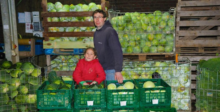 Obst Gemuese UlricObst Gemuese Ulrich Cuypers Dornbuch (© Gemüsebau Urlich Cuypers)h Cuypers Dornbuch