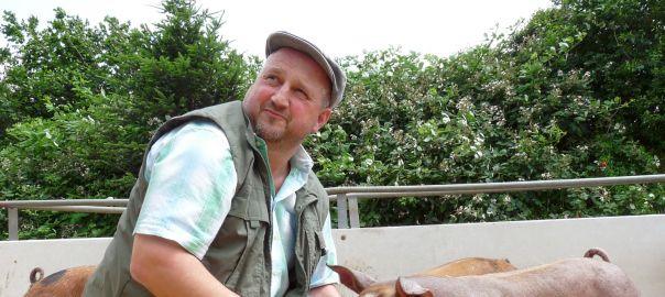 Poetterhof Willi Steffens Schweine Schweinezucht